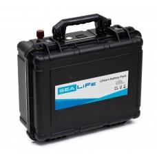 Аккумуляторная батарея SeaLife LFP24-80